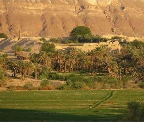makainun yemen archeorient