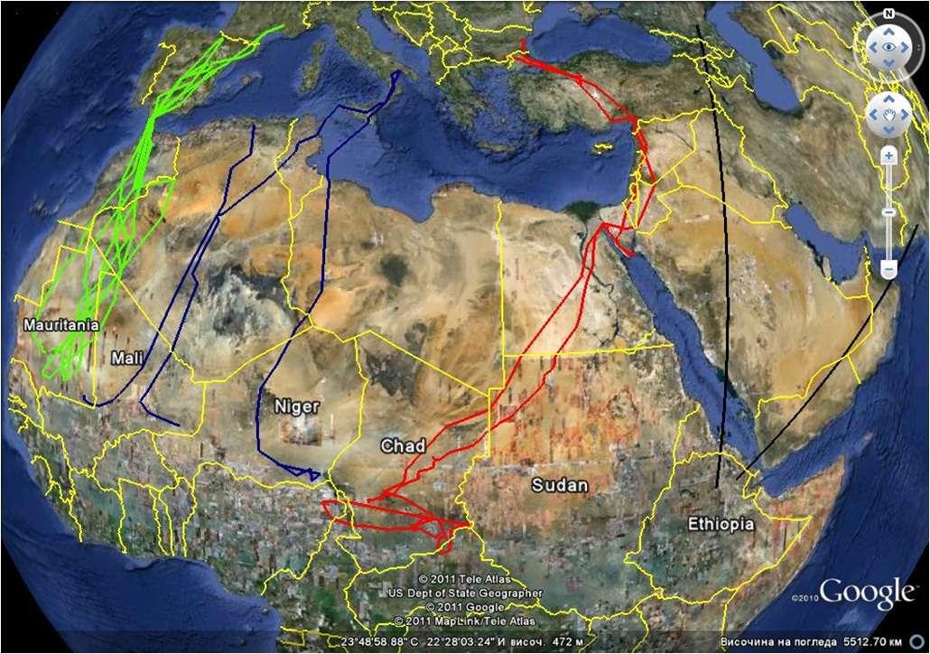 percno migration