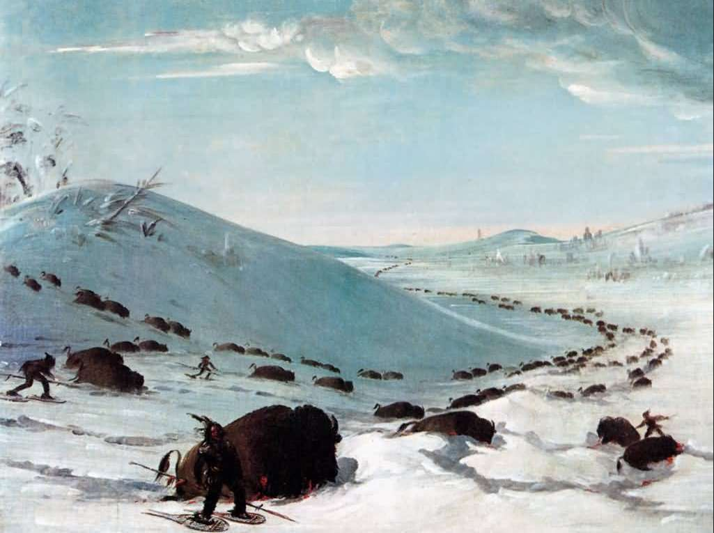 georges_catlin_chasse_bison