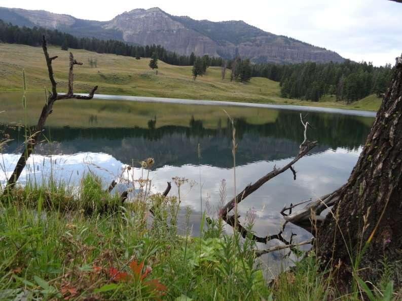 trout_lake