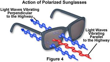 lunettes_polarisees