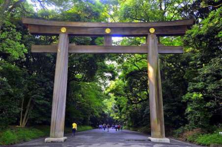 Tokyo, arche en cyprès rouge taïwanais marquant l'entrée de Meiji Jingu, le tombeau Shinto construit en l'honneur de l'Empereur Meiji et de l'impératrice Shoken