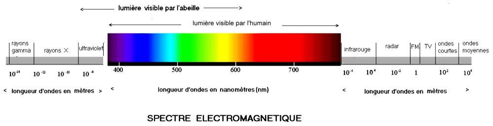 spectre_lumiere