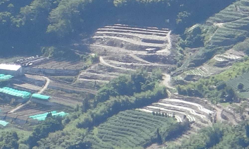 18 Création de nouvelles terrasses vraisemblablement pour accroître les plantations de thé