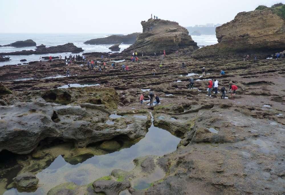 Port des Pêcheurs 3