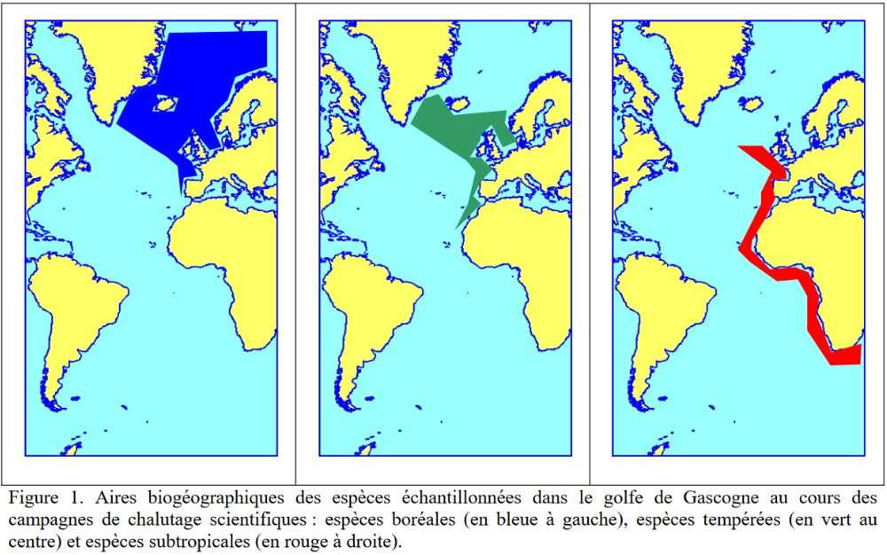 aires biogeographiques