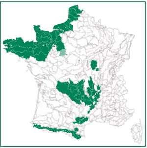 Les Hêtres en France