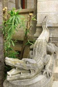 abbadia crocodile