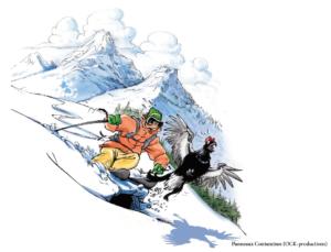 b2 skieur tetras
