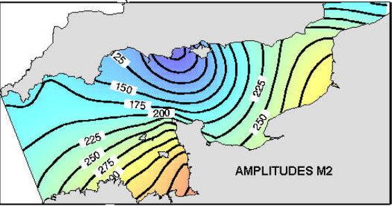model amplitudes