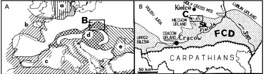miocene mer 1